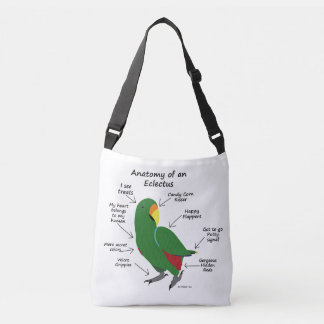 Anatomy of an Eclectus Crossbody Bag