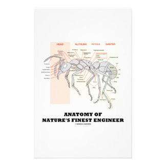 Anatomy Of Nature's Finest Engineer (Worker Ant) Personalized Stationery