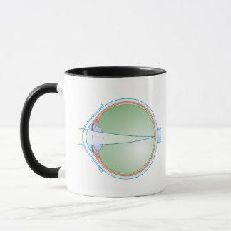 Anatomy of the Eye Mug