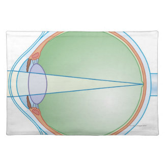 Anatomy of the Eye Placemat
