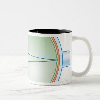 Anatomy of the Eye Two-Tone Coffee Mug