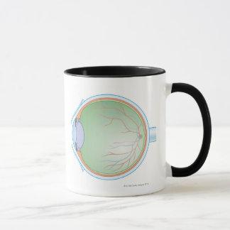 Anatomy of the Human Eye Mug