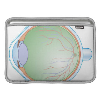 Anatomy of the Human Eye Sleeve For MacBook Air