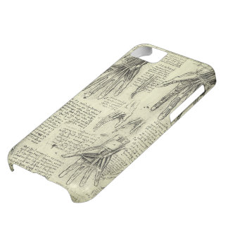 Anatomy of the Human Hand by Leonardo da Vinci iPhone 5C Case