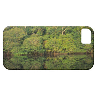 Anavilhanas, Amazonas, Brazil. Rainforest river Barely There iPhone 5 Case
