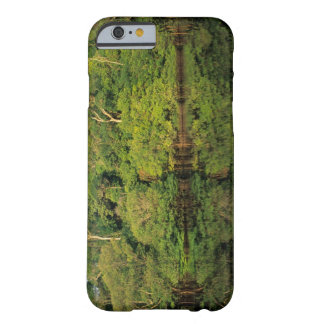 Anavilhanas, Amazonas, Brazil. Rainforest river Barely There iPhone 6 Case