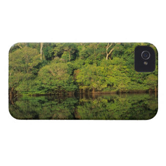 Anavilhanas, Amazonas, Brazil. Rainforest river Case-Mate iPhone 4 Case