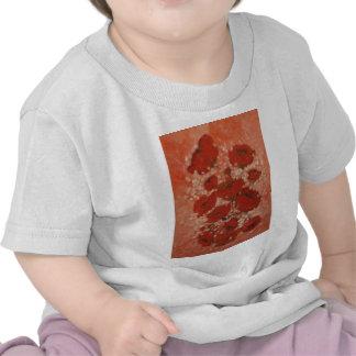 Anca Sofia Decorative Art: Poppies T-shirt