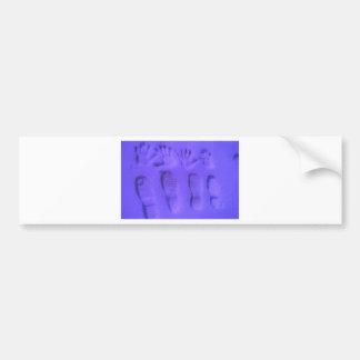 Anca Sofia Decorative Art Traces Bumper Stickers