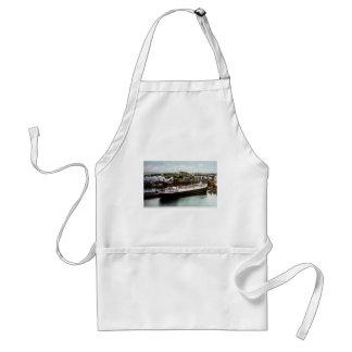 Anchor Line Dock, Marquette, Michigan 1908 Adult Apron