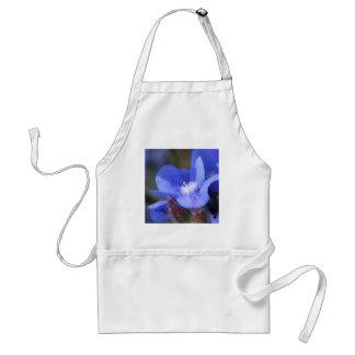 """Anchusa Azurea """"Dropmore"""" apron"""