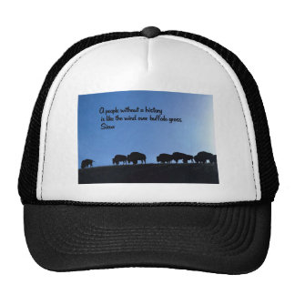 Ancient American Indian proverb Hats