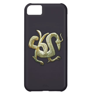 Ancient bronze chinese dragon iPhone 5C case