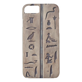 Ancient Carvings iPhone 7 Case