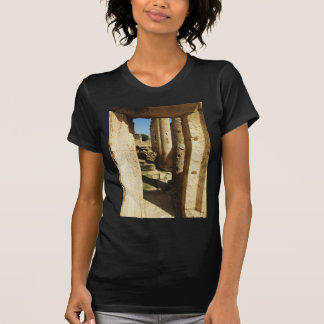 Ancient city of Hierapolis in Turkey T-Shirt