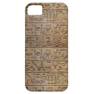 Ancient Egyptian Hieroglyphs Designer Case