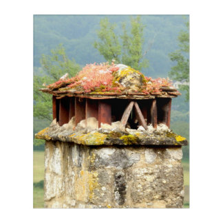 Ancient French Chimney Acrylic Wall Art