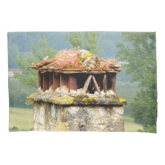 Ancient French Chimney Pillows Pillowcase