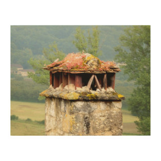 Ancient French Chimney Wood Wall Art