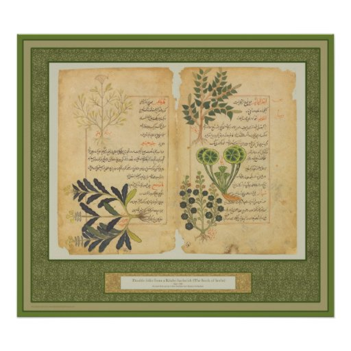 Ancient Herbal Botanic Print / Wall art