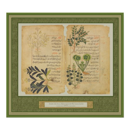 Ancient Herbal Botanic Print / Wall art