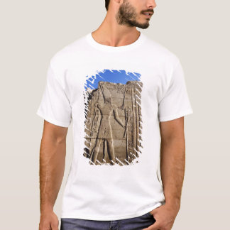 Ancient hieroglyphs on wall, Temple of Karnak, T-Shirt