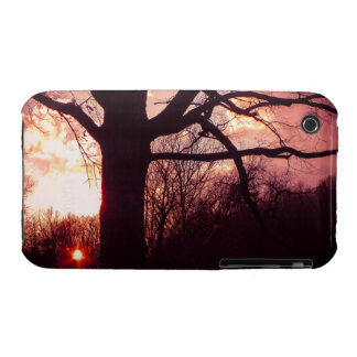 Ancient Oak at Sunset iPhone 3 Case-Mate Cases