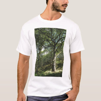 Ancient oaks T-Shirt