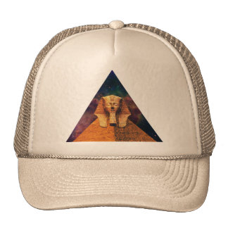 Ancient Sphynx in Space Hat