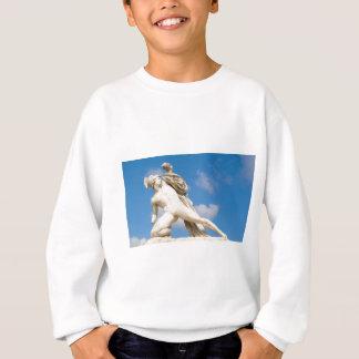 Ancient statue sweatshirt