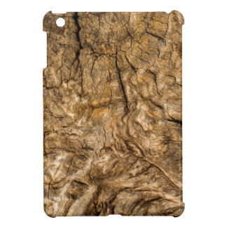 Ancient Timber iPad Mini Cases