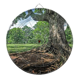 Ancient Tree and Roots Dart Board