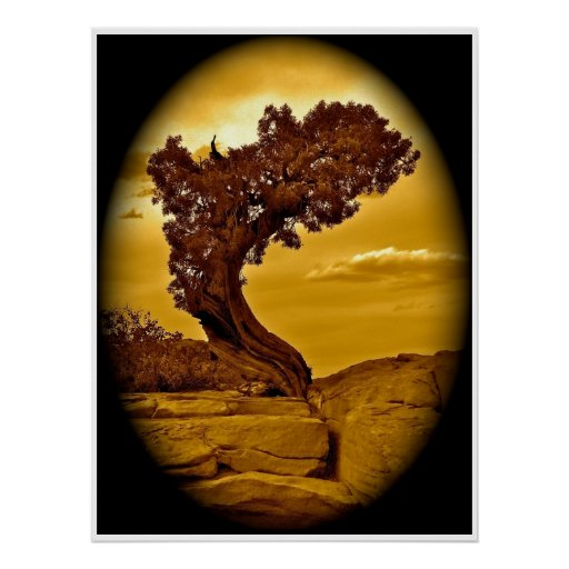 ANCIENT TREE IN ANTIQUE, BROWN AND BLACK PRINT