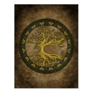 Ancient Tree of Life Post Card
