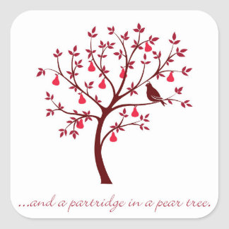 And a partridge in a pear tree square sticker