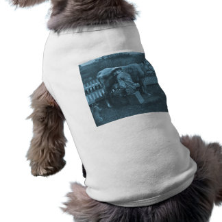 And Nicodemus the Cat was Fed by the Wayside Sleeveless Dog Shirt