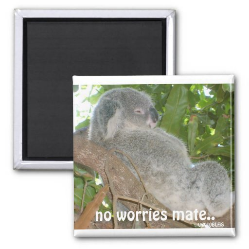 And The Problem Is, no worries mate.., ©2010BLHS Fridge Magnets