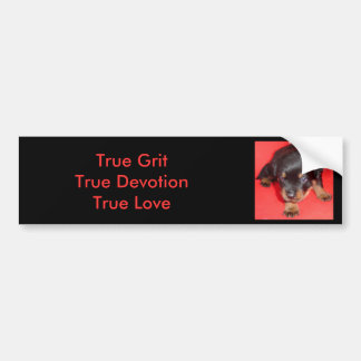 """And they call it """"Puppy Love"""" Bumper Sticker"""