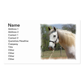 ANDALUSIAN HORSE HEAD MORISCO PACK OF STANDARD BUSINESS CARDS