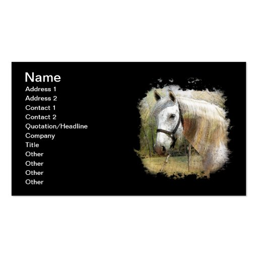 ANDALUSIAN HORSE PORTRAIT BUSINESS CARD TEMPLATE