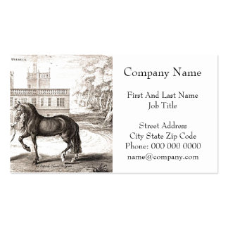 Andalusian Horse Vintage Drawing Art Pack Of Standard Business Cards