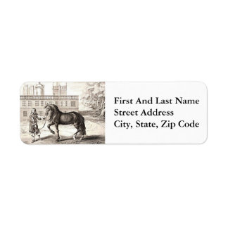 Andalusian Horse Vintage Drawing Art Return Address Label