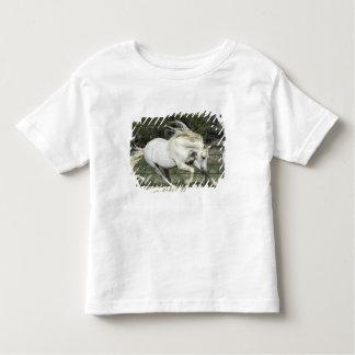 Andalusian Stallion running, PR Toddler T-Shirt