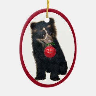 Andean Bear Foundation 2011 Ornament