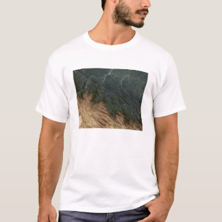 Andes Mountains T-Shirt