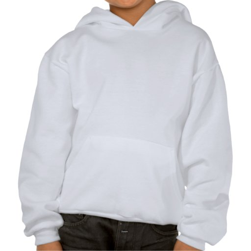 Andrew Cuomo for Governor 2010 Star Design Hooded Sweatshirts