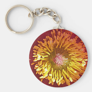 anemone basic round button key ring