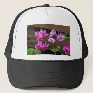 anemone coronaria in the garden trucker hat