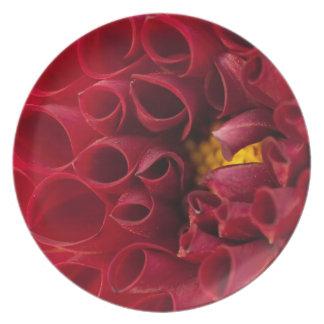 Anemone Dahlia Melamine Plate