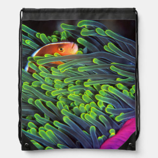 Anemone Fish Hiding In Anemone, Mozambique 2 Drawstring Bag